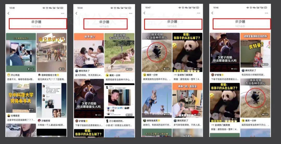 鸟哥笔记,短视频,孟大伟,涨粉,流量,微信视频号,涨粉,视频号,短视频