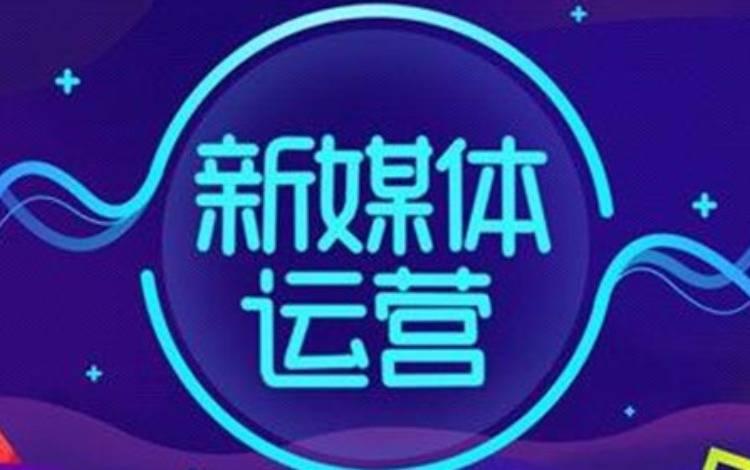 "B站2019百大UP主""朱一旦的枯燥生活""的账号运营分析"