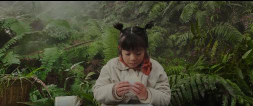 苹果宣布春节贺岁片:你在怕什么呢?,广西红客
