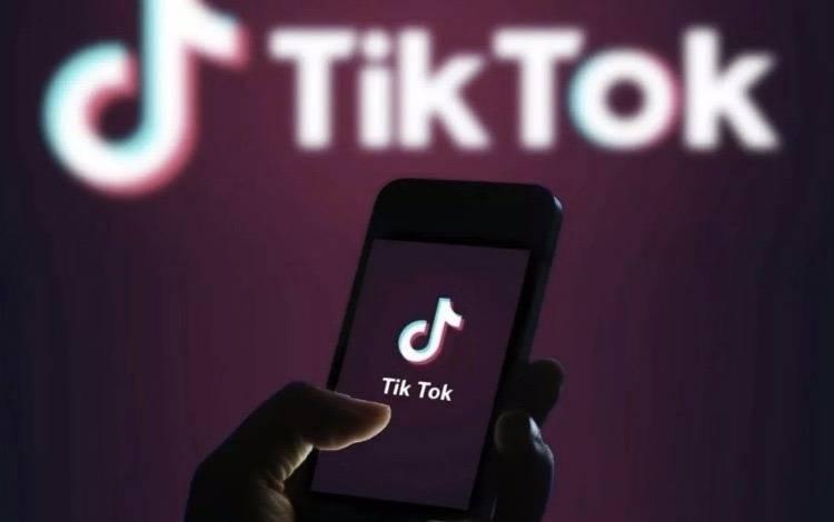 5个好用的TikTok数据分析工具推荐