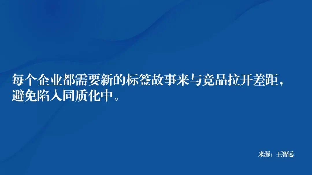鸟哥笔记,广告营销策略,王智远,案例分析,品牌策略,策略,策略,案例分析,品牌定位