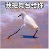 鸟哥笔记,ASO,小妖精,APP换量