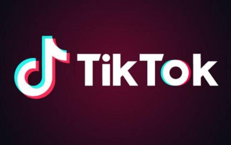 以TikTok为例海外流量打法大全:官方Ads、独立进站