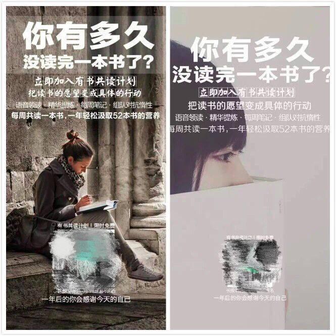 鸟哥笔记,营销推广,野生的独孤菌,营销,案例,social营销案例,影响力
