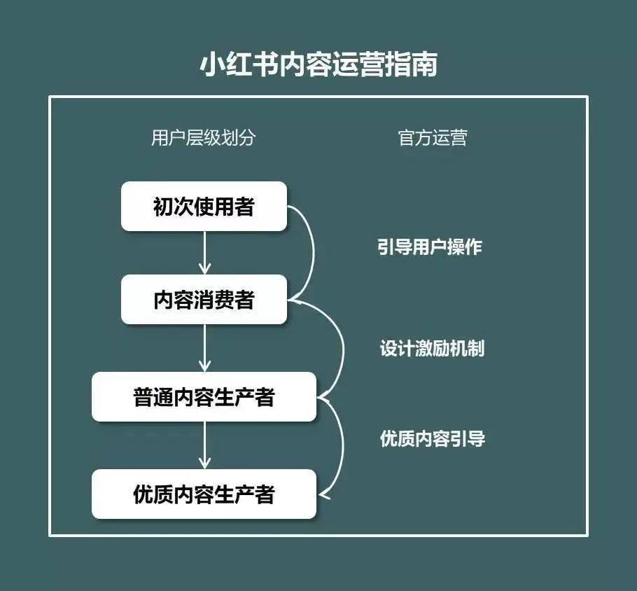 鸟哥笔记,新媒体,赵子辰Vic,小红书,内容生态,图文,内容运营,小红书,内容运营