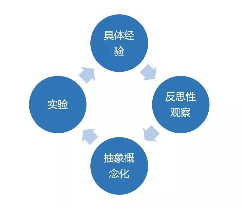 鸟哥笔记,职场成长,王帅,工作方法,职场,逻辑思考,个人成长,思维