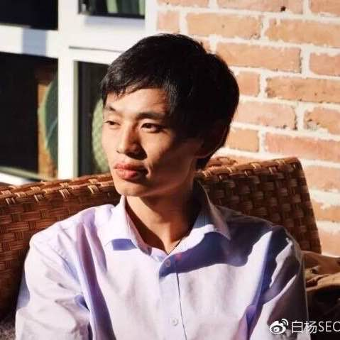 白杨seo